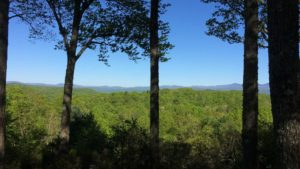 freelancing in brevard north carolina